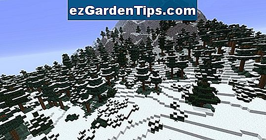 Cold Desert Biome Plants